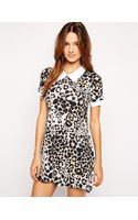 Ax Paris Shift Dress with Collar in Leopard Print - Lyst