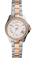 Fossil Womens Mini Cecile Twotone Stainless Steel Bracelet Watch 29mm - Lyst