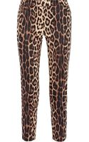 Moschino Cheap & Chic Cropped Leopardprint Stretchcotton Pants - Lyst