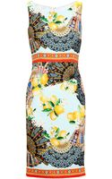 Dolce & Gabbana Fan and Lemon-print Dress - Lyst