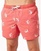 Asos Swim Shorts With Swallow Print - Lyst