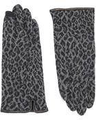Echo Cheetah Print Gloves - Lyst