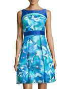 Theia Sleeveless Printed Organza Dress - Lyst