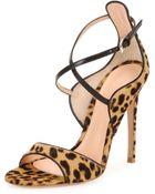 Gianvito Rossi Leopard-Print Calf Hair Cross-Strap Sandal - Lyst