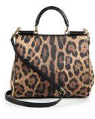 Dolce & Gabbana Miss Sicily Leopard-Print Medium Satchel - Lyst