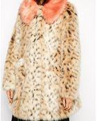 Asos Faux Fur Leopard Print Coat With Contrast Collar - Lyst