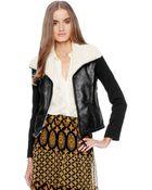 Ella Moss Dimitri Shawl Collar Jacket - Lyst