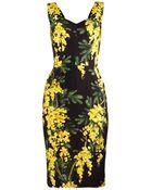 Dolce & Gabbana Mimosa-Print Cady Dress - Lyst