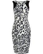 Karen Millen Leopard Print Dress - Lyst