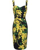 Dolce & Gabbana Mimosa Print Cady Dress - Lyst