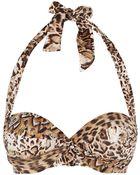 Gottex Leopard Print Surplice Bikini Top - Lyst