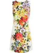 Dolce & Gabbana Floral Jaquard Dress - Lyst