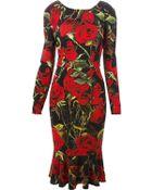 Dolce & Gabbana Rose Print Dress - Lyst