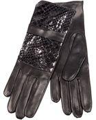 Imoni Crocodile Effect Panel Glove - Lyst