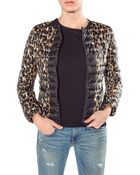Moncler Soufre Leopard Printed Quilted Jacket - Lyst