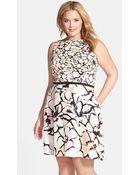 Taylor Dresses Plus Size Women'S Twin Print Fit & Flare Dress - Lyst