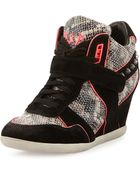 Ash Bisou Pipe-Trim Snake-Embossed Leather Wedge Sneaker - Lyst