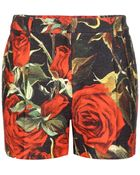Dolce & Gabbana Floral-Printed Cotton Shorts - Lyst