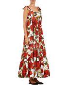Dolce & Gabbana Rose-Print Maxi Dress - Lyst