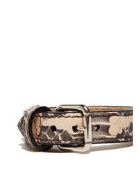 Proenza Schouler | Metallic Ps11 Single Bracelet | Lyst