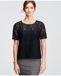 Ann Taylor | Blue Sheer Lace Tee | Lyst