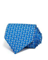 Ferragamo   Blue Hummingbird Classic Tie for Men   Lyst