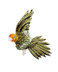 Brooks Brothers | Green Audubon Parrot Brooch | Lyst
