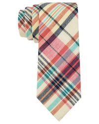 Tommy Hilfiger - White Madras Slim Tie for Men - Lyst