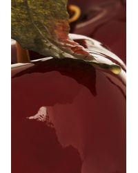 Piers Atkinson - Red Hyper Cherries Headband - Lyst