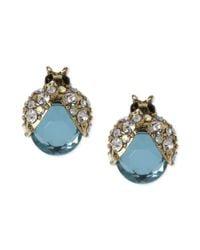 Betsey Johnson | Metallic Gold-tone Blue Glass Crystal Bug Stud Earrings | Lyst