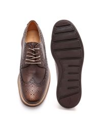 Cole Haan | Brown Lunargrand Longwing Brogues for Men | Lyst