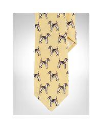 Polo Ralph Lauren - Yellow Dog-print Linen Narrow Tie for Men - Lyst