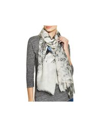 Lily and Lionel | Gray Oberon Scarf | Lyst