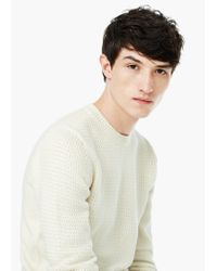 Mango | White Textured Cotton Sweater for Men | Lyst