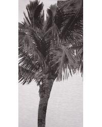 N°21 | Gray Sweatshirt with Palm Tree | Lyst