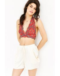 Pins And Needles | Brown Printed Lace Halter Bra | Lyst