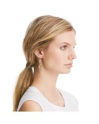 COACH - Metallic Oval Link Drop Earrings - Lyst