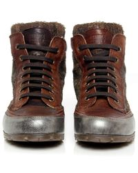 Candice Cooper   Brown Lion Leather High Top Trainers   Lyst
