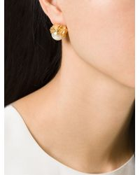 Alighieri   White Pearl Stud Earrings   Lyst