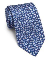 Ferragamo - Blue Butterfly Silk Tie for Men - Lyst
