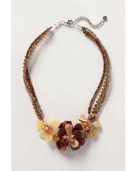 Anthropologie - Brown Aerides Necklace - Lyst