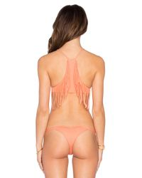 Indah - Pink Alice Fringe High Neck Bikini Top - Lyst