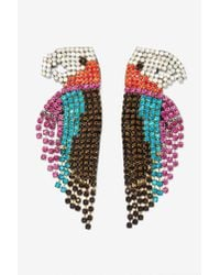 Nasty Gal | Multicolor Melody Ehsani See Me Parrot Earrings | Lyst