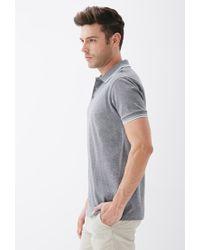 Forever 21 - Gray Stripe-trimmed Piqué Polo for Men - Lyst