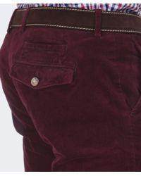 Hackett Purple Ashby Corduroy Trousers for men