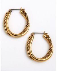 Lauren by Ralph Lauren | Metallic Twisted Link Oval Hoop Earrings | Lyst