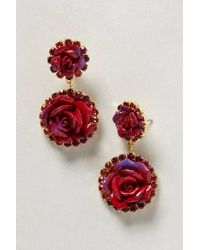 Anthropologie | Red Bermuda Rose Drops | Lyst