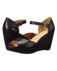 Trotters | Black Amber | Lyst