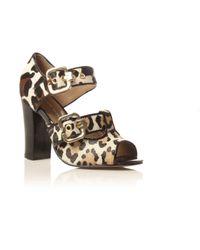 KG by Kurt Geiger | Multicolor Leopard Print Jungle Sandals | Lyst