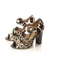 KG by Kurt Geiger - Multicolor Leopard Print Jungle Sandals - Lyst